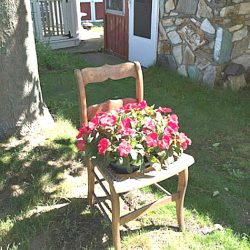 How to Make An Old Chair Into Nature's Beauty (With Detailed Instructions)