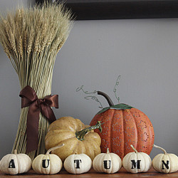 DIY Autumn Project