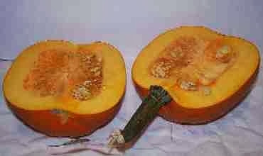pumpkin%20cut[1][1]