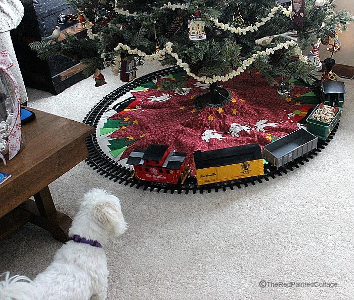 Christmas Molly6