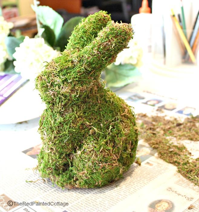 spring bunny5