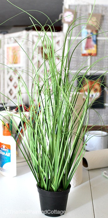 "DIY ""Think Spring"" Decorating - grass"