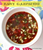End of Summer Delight – Gazpacho