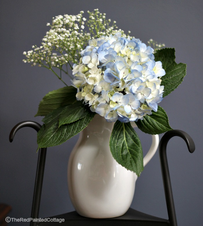 blue hydrangea for a stunning pop of color