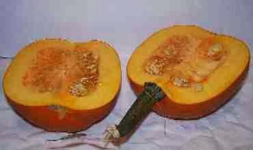 pumpkin%20cut[1][1]