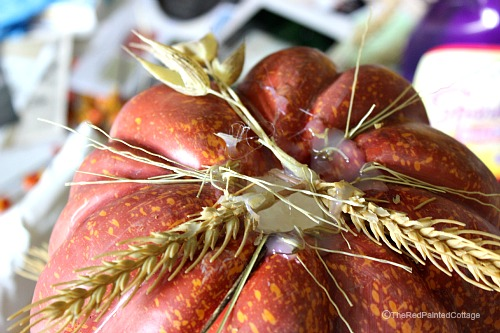 closeup of hot glue on pumpkin to hold the wheat in place