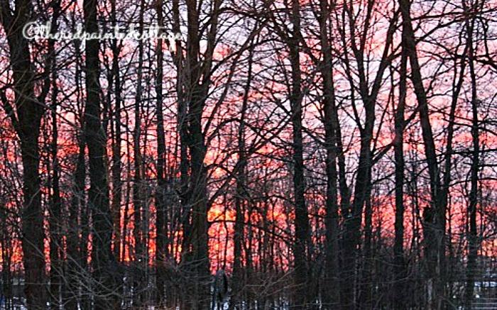 sunset1 700