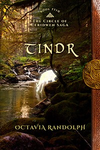 tindr_book_five_small