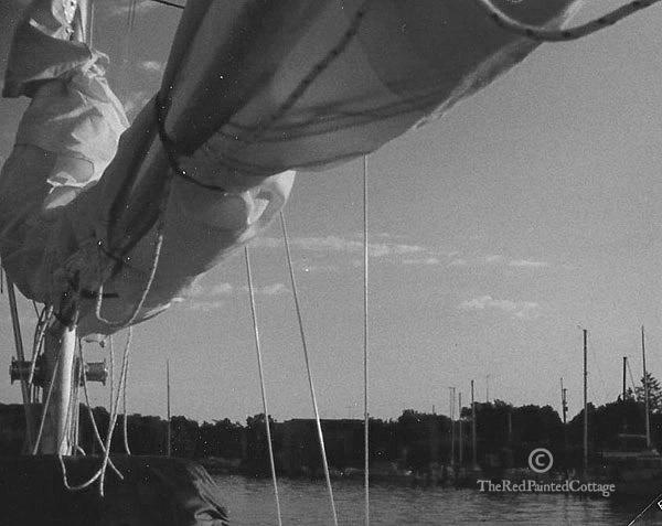 sailingt_edited-1.jpg