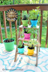 Our Little Herb Garden With Free Printable