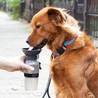 dog-bottle