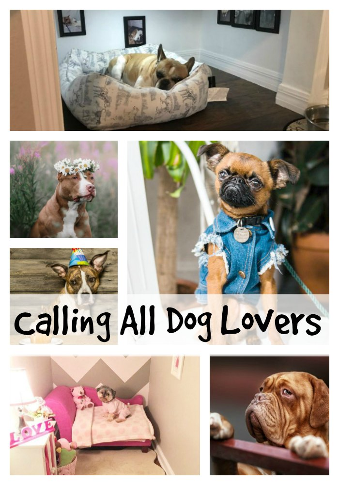 Calling All Dog Lovers