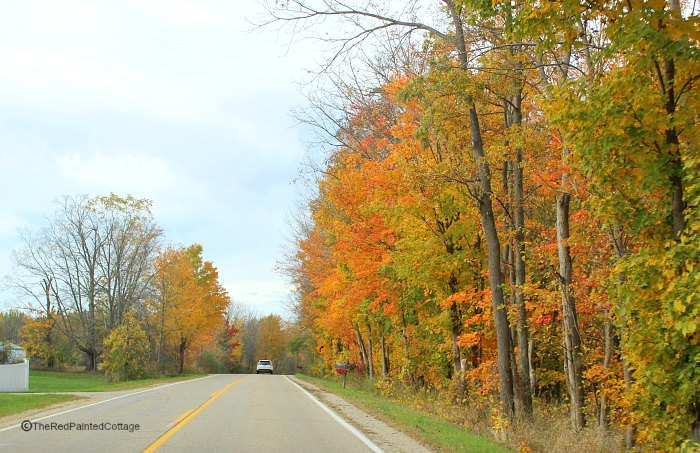 Taking The Backroads For A Color Tour