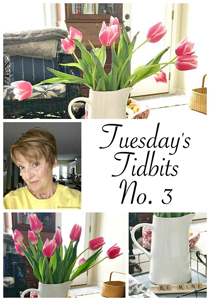 Tuesday's Tidbits No. 3