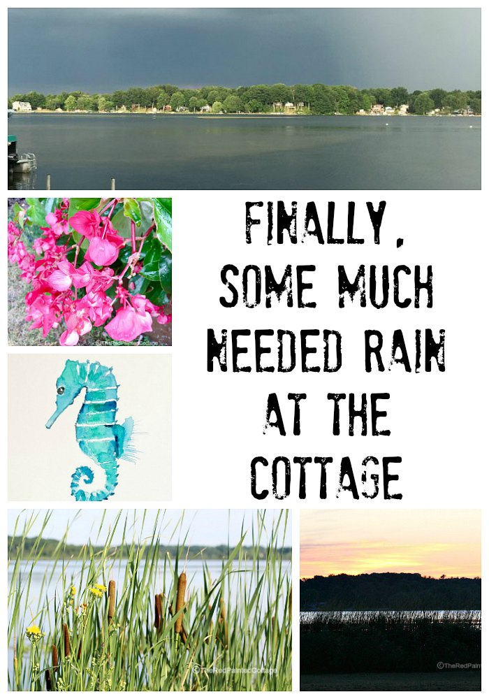 Finally, Some Much Needed Rain At The Cottage