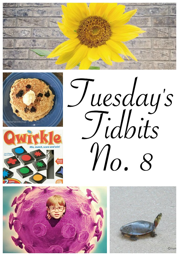 Tuesday's Tidbits, No. 8