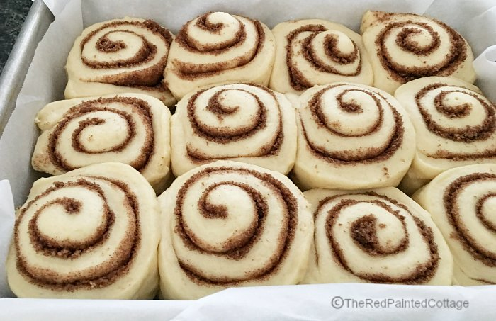 Amazingly Delicious Cinnamon Rolls