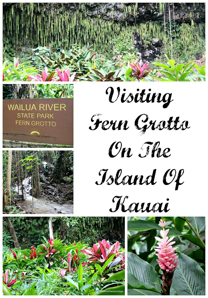 Visiting Fern Grotto On The Island Of Kauai