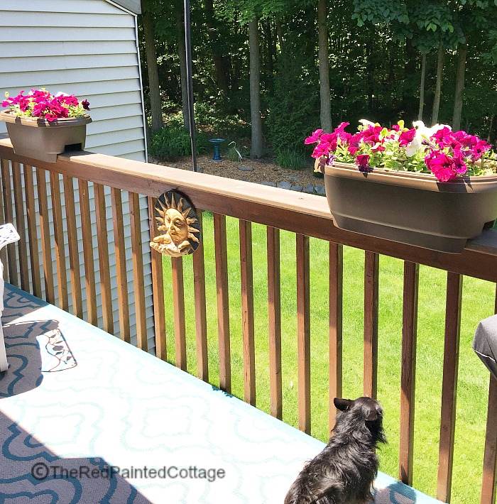 Summertime Living On Our Deck