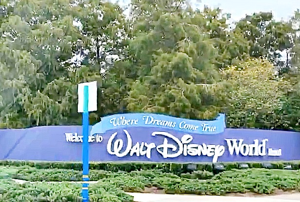 Best Tips And Strategies To Know For WDW